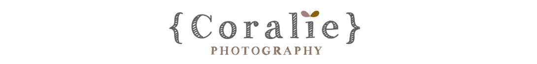Photographe de mariage | International wedding photographer | Paris | France | Nord pas de Calais Portrait Grossesse Bb Enfants Famille logo