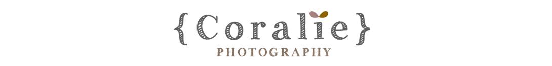 Photographe de mariage | International wedding photographer | Paris | France | Nord pas de Calais Portrait Grossesse Bébé Enfants Famille logo