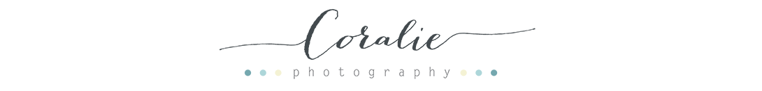 Photographe de mariage | International wedding photographer | Paris | France | Nord pas de Calais Portrait Grossesse Bébé Enfants Famille logo